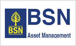 BSN Asset management